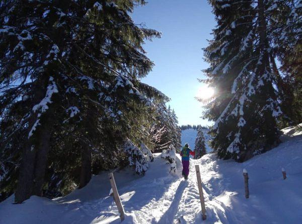 Der dritte Anlauf zum #feuerstätterkopf ⛰️ nur dieses Mal von #balderschwang #bayern aus. Ohne Tourenski oder Schneeschuhe,...
