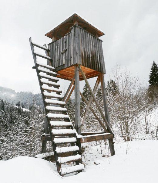 Hochsitz 🏃🏻♂️ #ebnit #hochsitz #winter #dornbirn #österreich #berglauf #landscapephotography #landscape #landscapelovers #landscape_lovers #trail ...