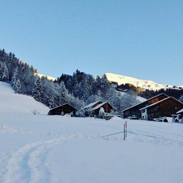 Neuschnee im Großen Walsertal ❄️ . . . . . . #grosseswalsertal #neuschnee ...