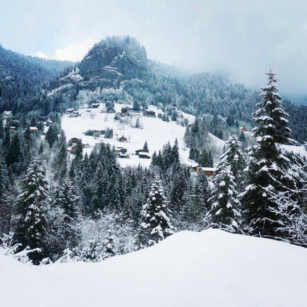 Blick auf Ebnit - Berglauf am 19.01.2020 Gütle - Ebnit #ebnit #trees #winter ...