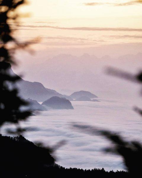 #ussicht, Jänner 2020 Pentax K-1 I Pentax 70-200 f2.8 #landscapephotography #naturephotography #natur #pentax ...