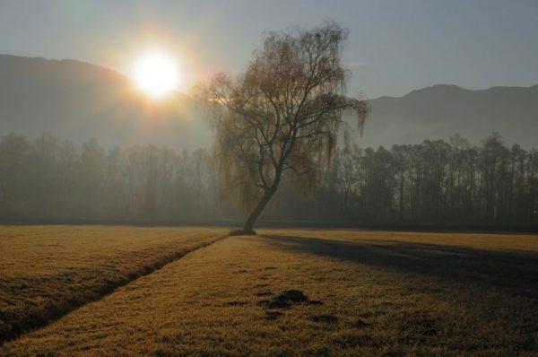 #lauteracherried #sonnenaufgang #herbst