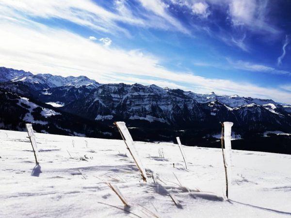 Schneeschuhwandern mit @patrick_sohler Nächste Wanderung ist am 22.2.2020 #eisFahnen #kanisfluh #genussmomente #genussregion #visitbregenzerwald ...