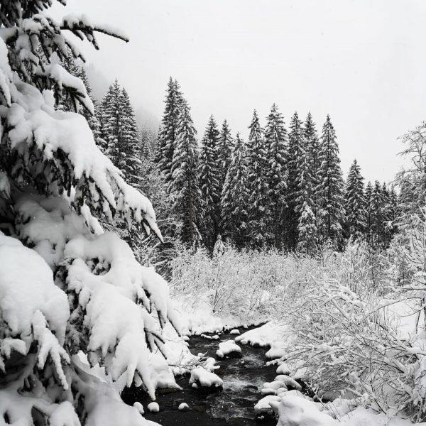 Wunderschöne Winterlandschaft auf dem Panoramaweg im Klösterle. ❄️ . . . . . ...