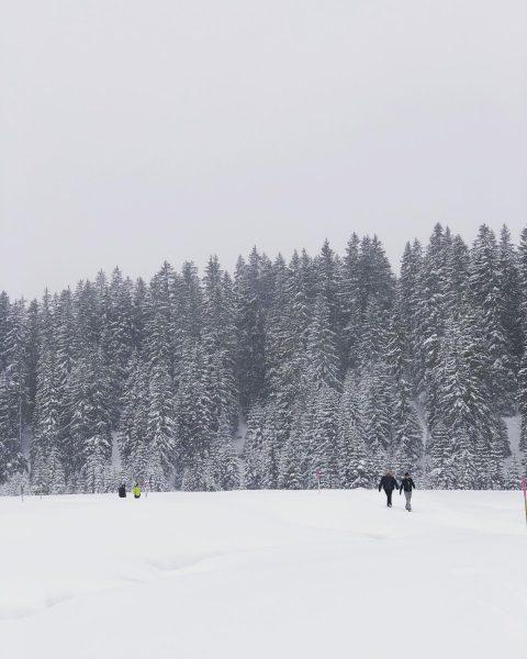 die Ruhe nach dem Sturm #auroralech #bergefürdieseele #lechamarlberg #arlberg #winter #winterwandern #travel #holidaymood ...