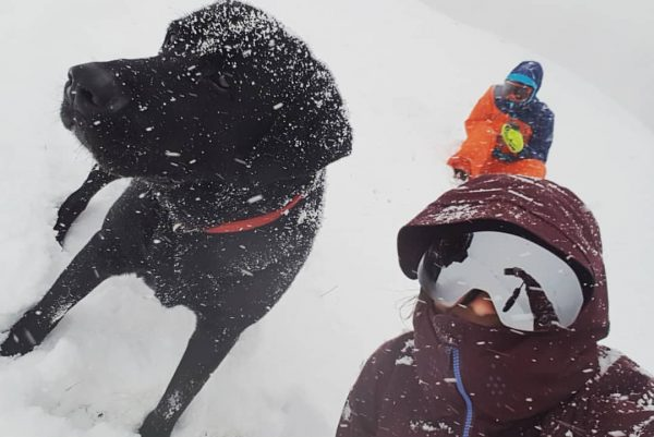 SnowBeau🐕❄ #beaudehond #snowfever #sneeuwpret #vorarlberg Bartholomäberg