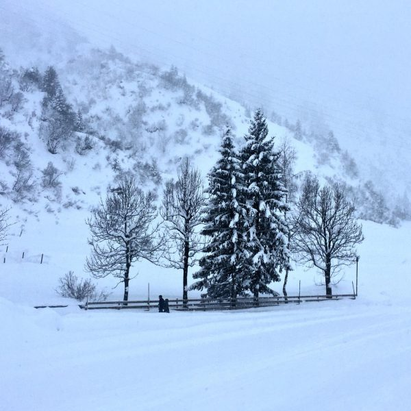 Winter walk, Stuben. . . . #arlberg #skiarlberg #stuben #stubenamarlberg zurs #lechzurs #powder ...