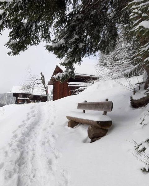 #visitvorarlberg #kristberg #silbertal #vorarlbergwandern #montafon #austria_official #snow #total_meteo_ #snowland #snowlandscape #winterwonderland #winteriscoming #h2o_natura ...