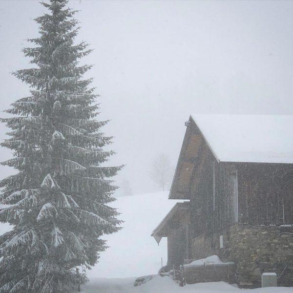 Winter im Kleinwalsertal #winter #winterwonderland #austria #kleinwalsertal #kleinwalsertaltravel #mittelberg #manuelsphotography Mittelberg, Vorarlberg, Austria