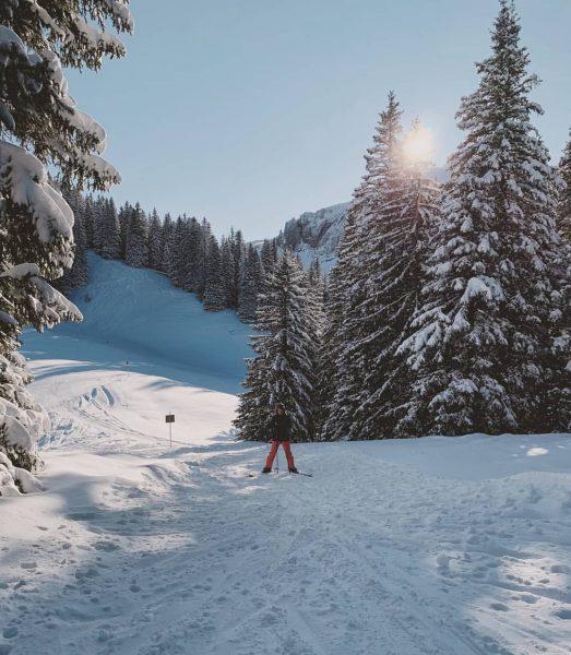 🌲🙋🏻♀️🌲 _____________________________________________ #mellau #mellaudamüls #bregenzerwald #visitbregenzerwald #vorarlberg #visitvorarlberg #explorevorarlberg #österreich #austria #austriagram #feelaustria ...