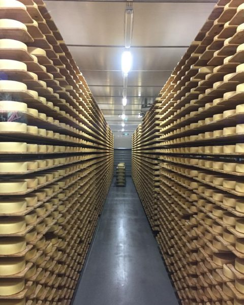 Käse gefällig? #bregenzerwald #bergkäse