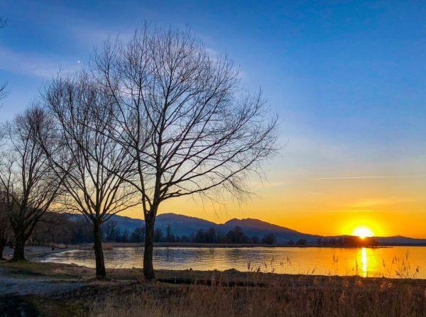 The last minute #lakeofconstance#rohrspitz#feelaustria#bodensee#bodenseebilder#dawn#silence#lightfull#lake#lastminute