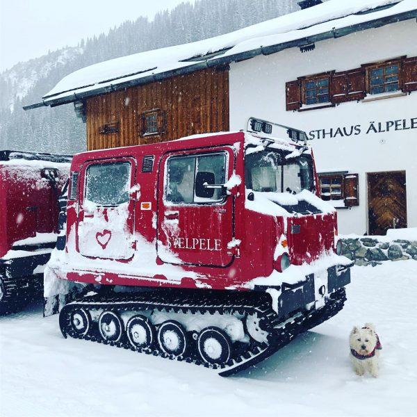 #wanderlust #wandernmachtglücklich #hüttengaudi #schnee #snow #älpele #lechamarlberg