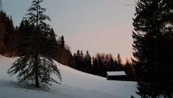#erholung in der #schönen #natur in #schwarzenbergbregenzerwald ❄😍 . . #morgenrot #winterurlaub #entspannen ...