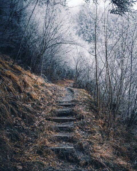 Stairway to Heaven • • • @allbeauty_addiction @ig_serenity @nikondach @stayandwander @got__greatshots • • ...