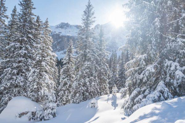 ... winterwonderland ☀️☀️☀️ #lindauerhütte #dreitürme #drusenfluh #ländle #vorarlberg #vorarlbergwandern #vorarlbergtourismus #austriatravel #montafontourismus #montafon ...