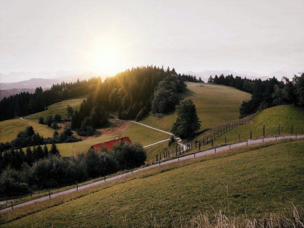 View over the Pfänder ⛰ #landschaftsfotografie #pfänder #bregenz #vorarlberg #österreich #bergluft #bergliebe #naturfotografie ...