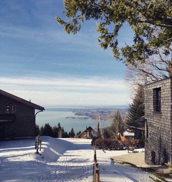 #allgäu #allgäuliebe #austria #bregenz #pfänder #lakeofconstance #bodensee #snow #wintersonne #natureistherapy #bregenzerwald #lindau #bayern ...