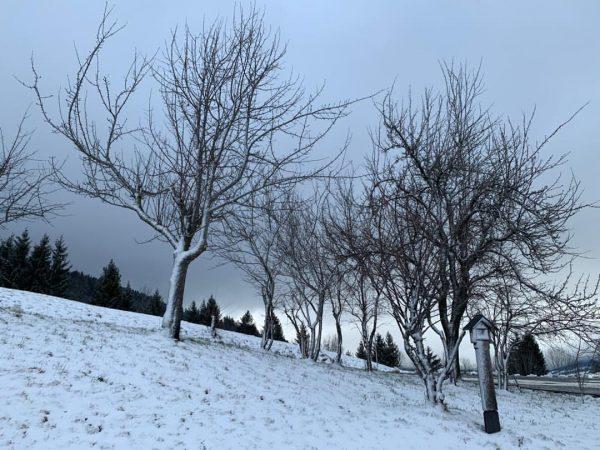 Why I love mountains and snow #Schwarzenberg #Bregenzerwald