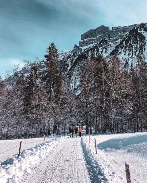 🚶🏻♂️🚶🏼♀️🚶🏽♂️🚶🏻♀️🚶🏽♀️ . . . #bregenzerwald #visitvorarlberg #visitbregenzerwald #austria #visitaustria #austriagram #discoveraustria #365austria #ig_austria ...