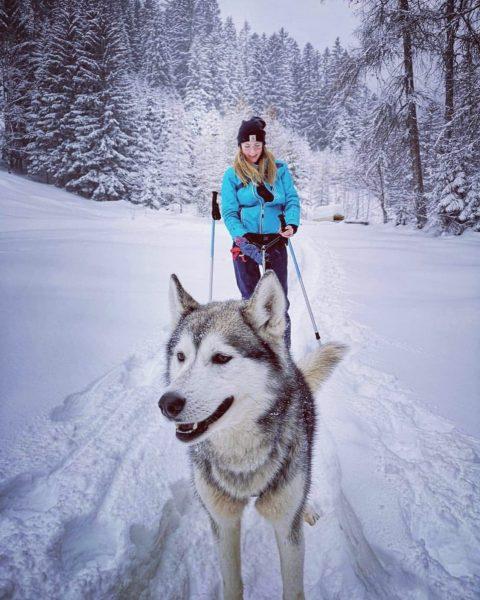 ~ Schneeschuhwandern mit Huskys ~ Eines der schönsten Erlebnisse die wir je hatten ...