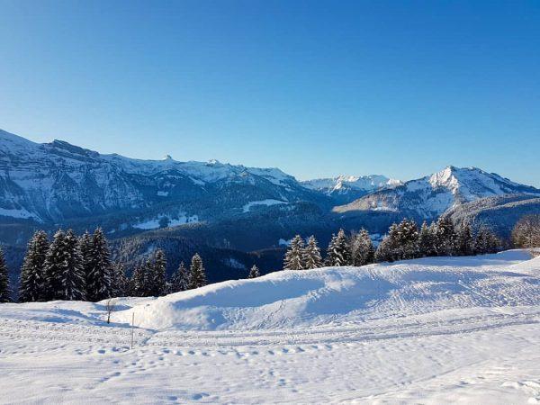 🗻🌞👌 • #berghofbezau #bezau #sonderdach #bregenzerwald #vorarlberg #visitvorarlberg #visitsonderdach #visitbregenzerwald #visiteurope #visitaustria #visitbezau ...