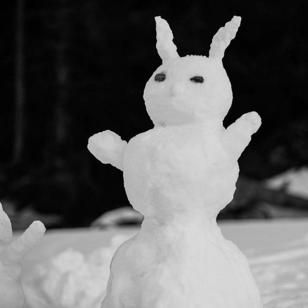 Der Winter geht weiter ....wir haben top Bedingungen und gestern und heute kam ...