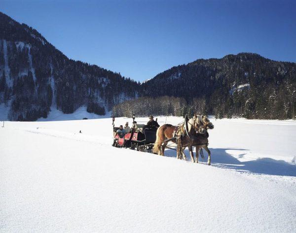Im #Winter mit dem Auto fahren? 🚙 Ist doch viel zu anstrengend... 🧐 ...