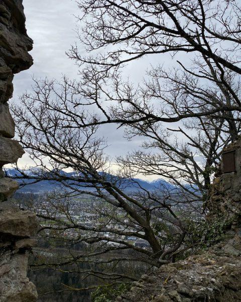 Sonntäglicher Blick vom Gebhardsberg auf unser schönes Land 🏞️Wurzel und Weite. Zwei wichtige ...