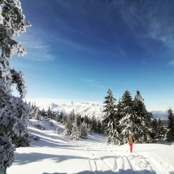 Ein weiteres tolles Bild von unserer schönen Skitour zum Wannaköpfle #ski #skitour #skitouring ...