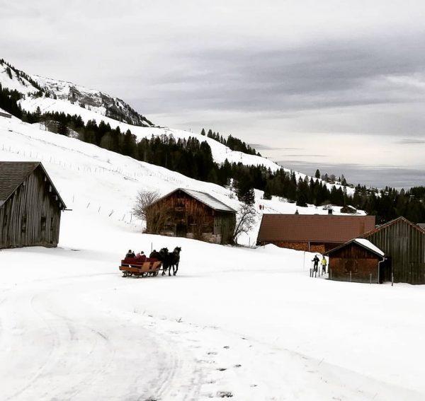 #schetteregg #egg #bregenzerwald #vorarlberg #austria #nature #landscape #outdoor #snow #winter #horses #carriage #alpinecabins ...