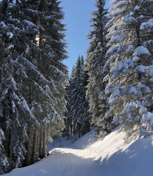 Winter wonderland ❄️ . . #kleinwalsertal #jagdhof #visitvorarlberg #visitaustria #winter #winterwonderland #hotel #riezlern ...