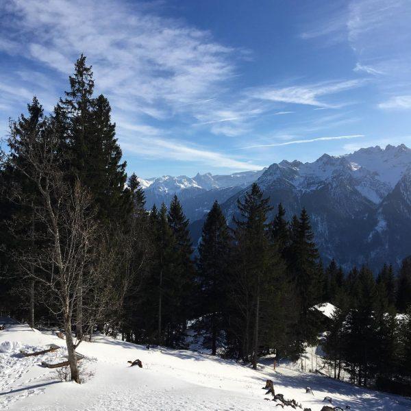 #alpengasthofmuttersberg #vorarlberg #visitvorarlberg #austria #austria🇦🇹 #österreich #австрия #горы #mountains #bergen #winter #зима #travel ...