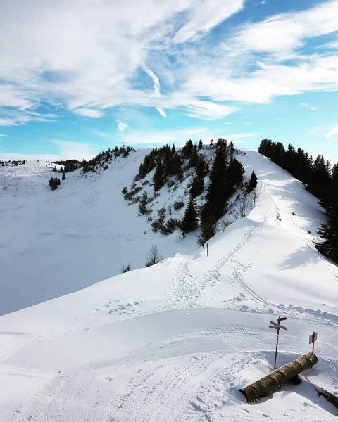 🌞❄🗻 • #berghofbezau #bezau #baumgarten #bregenzerwald #vorarlberg #österreich #austria #winter #urlaubindenbergen #urlaub #visitvorarlberg ...