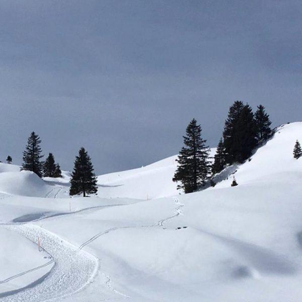 Thank you dear guests for the nice pics #k&y #bregenzerwald #visitbregenzerwald #winterwalk #schröcken