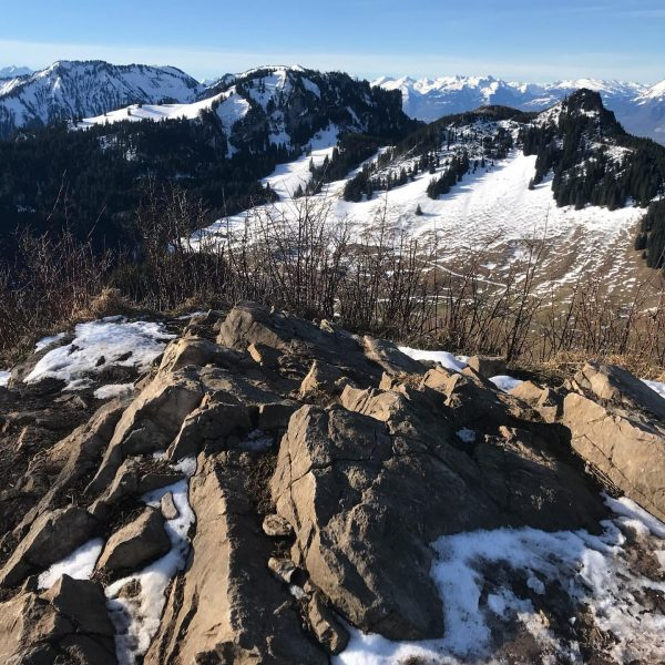 #staufenspitze #instarunners #mountainrunning #trailrunning #mountains #dornbirn #gipfelstürmer #mountaingirl Staufenspitze