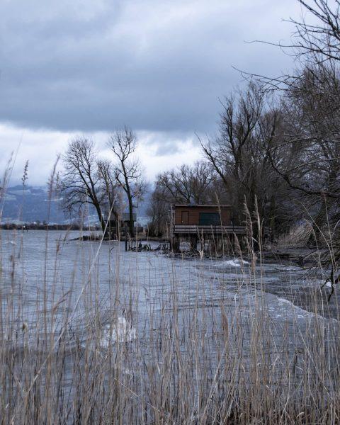 Rohrspitz🌊 #österreich #austria #visitaustria #vorarlberg #visitvorarlberg #lake #lakeconstance #höchst #snow #clouds #river #mood #cold #winter #sunset #nikon...