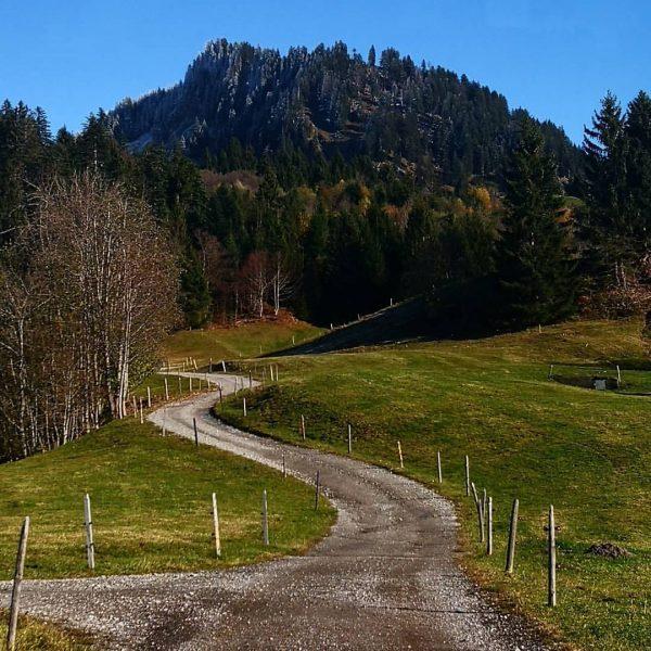 Felbers schiefem Haus - Wildriesalpe - Lustenauer Riesalpe - Bereuters Neualpe - Feuerstättenkopf ...