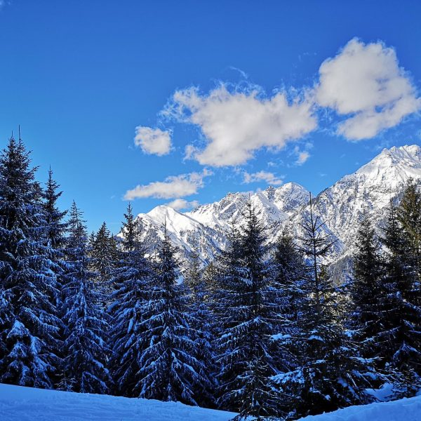 Am Samstag war ein traumhafter Skitag am #Sonnenkopf ⛷ . . . . ...