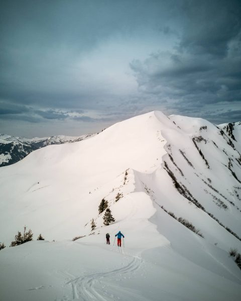 🌫️ Skitour Falzerkopf 1.968m ⛷️🏔️ . . . 4x Anfellen, 4x Abfahren 🤩 ...