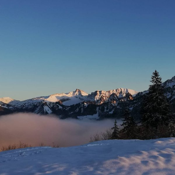 Hoher Ifen #bregenzerwald #bezau #baumgarten #niedere #winter #vorarlberg #schnee #winterlandschaft #andelsbuch #winterwonderland #kanisfluh ...