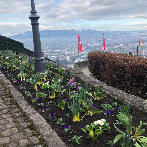 FRÜHLING 💐 Im Frühling kehrt die Wärme in die Herzen zurück 💞 . ...