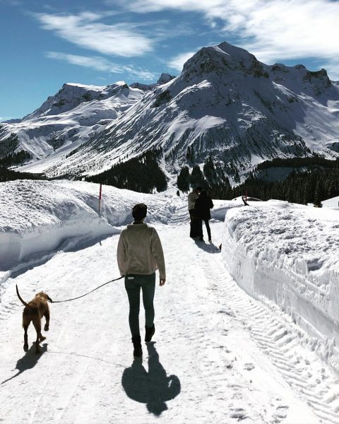 Take a walk on the sunny side ☀️ #auroralech #bergefürdieseele #lechzuers #skiarlberg #winter ...