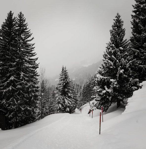 #visitvorarlberg #kristberg #silbertal #vorarlbergwandern #montafon #austria_official #snow #total_meteo_ #snowland #snowlandscape #winterwonderland #winteriscoming #h2o_natura #best_moments_nature #natureyourebeautiful #natura #bestnatureshot...