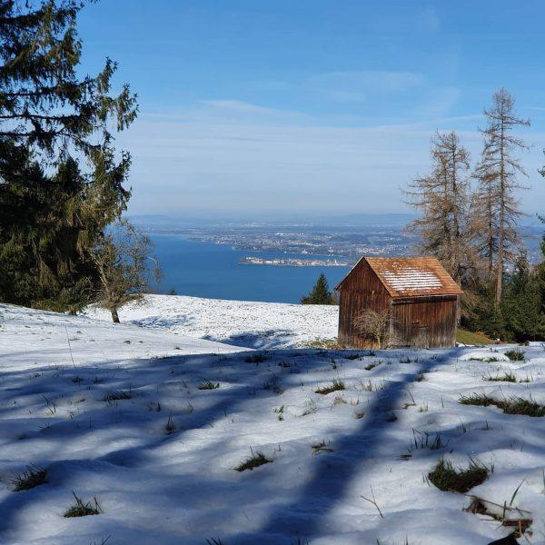 Wir lieben die Natur ❤💙❤ #nature #pfänder #bregenz #austria #vorarlberg #naturelover #bergliebe #mountains ...