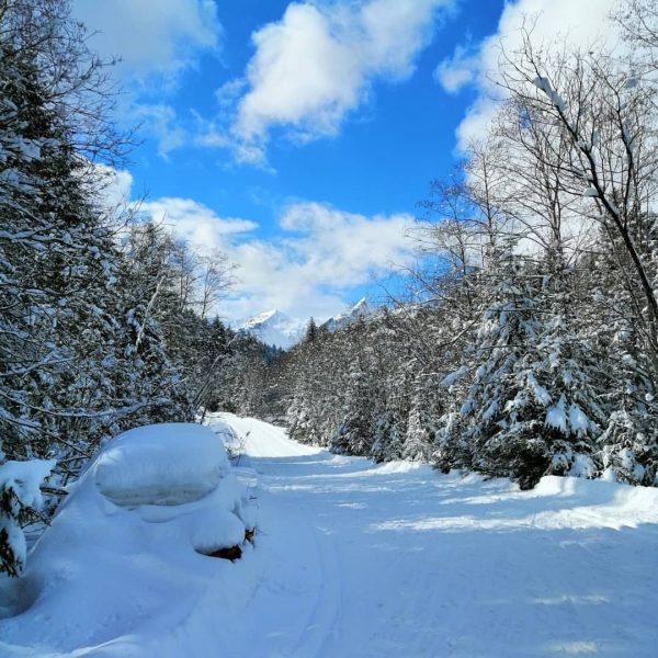 Diese Winterlandschaft macht das Herz auf🥰😘🤩😉😊 🏔️🏔️ 🏔️🏔️ Das Langlaufen hat heute damit ...