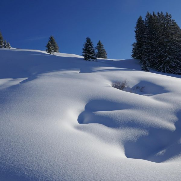 ...nice short trip to the bädle... best powder so near midth of march! ...