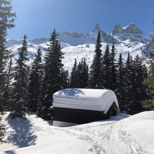 #vorarlberg #visitvorarlberg #österreich #austria #visitaustria #montafon #meinmontafon #gauertal #dreitürme #lindauerhütte #bergliebe #berge #mountains ...