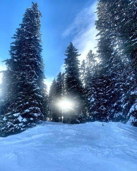 Die Wintersaison in unserem Gebiet wird mit dem Wochenende Sonntag 15. März 2020 ...