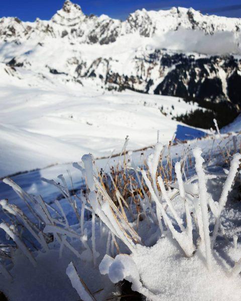 Hoch die Hände - Winterende?... war der Winter in dieser Saison ziemlich spät ...